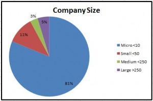 Graphy of Company Size Statistics